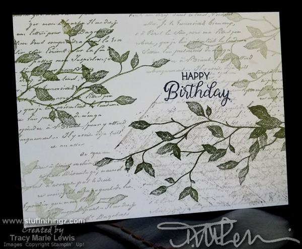 Green & Black Busy Birthday Cards   Tracy Marie Lewis   www.stuffnthingz.com