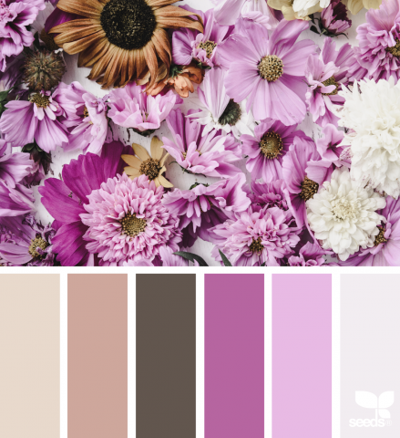 Design Seeds, Floral Hues | www.stuffnthingz.com