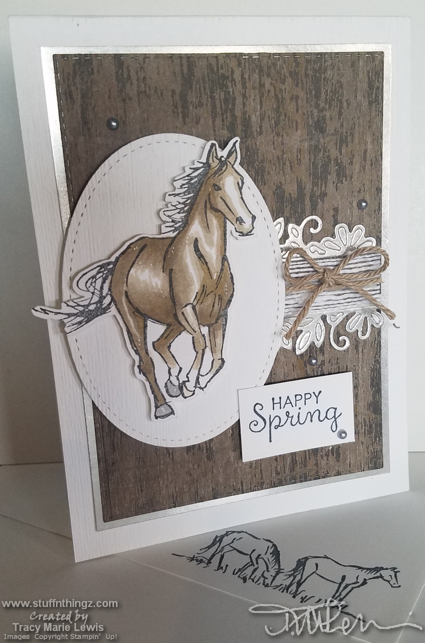 Card For The Western Horse Person | Tracy Marie Lewis | www.stuffnthingz.com