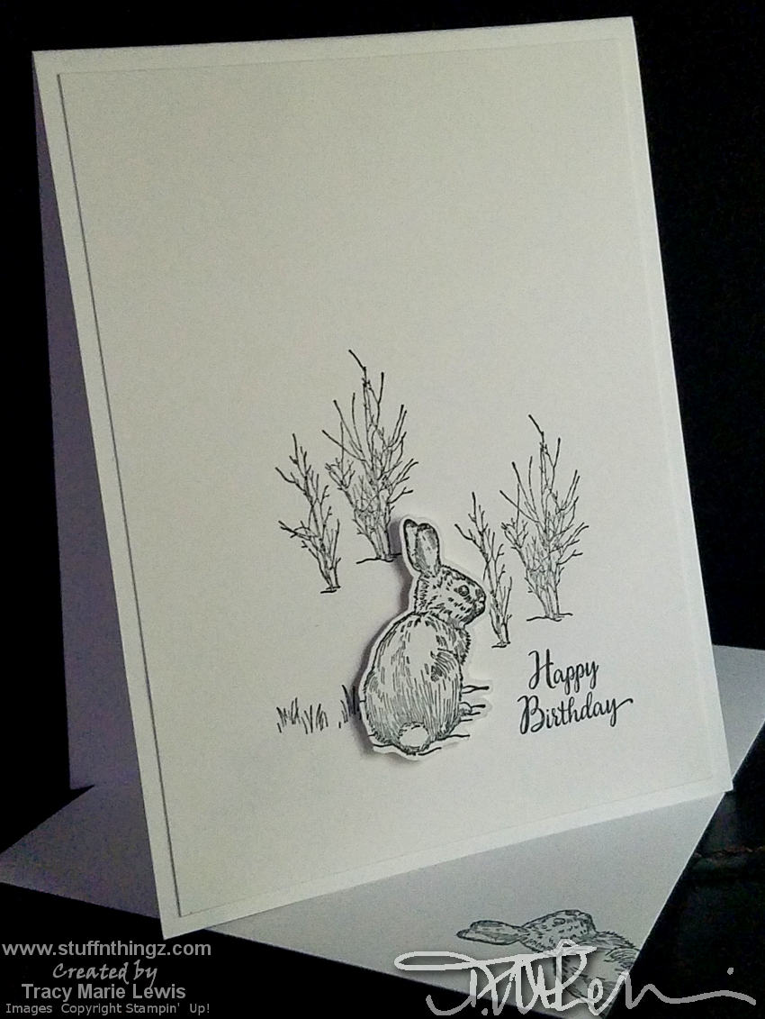 #simplestamping - bunny birthday card | Tracy Marie Lewis | www.stuffnthingz.com