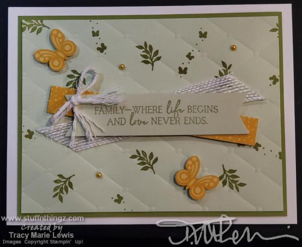 Alternatives - April 2020 Paper Pumpkin   Tracy Marie Lewis   www.stuffnthingz.com