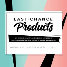 2020 Last Chance Products | Tracy Marie Lewis | www.stuffnthingz.com